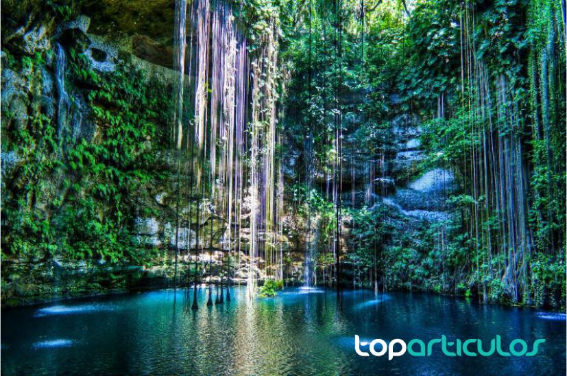 Descubre cuáles son los mejores cenotes de la Riviera Maya