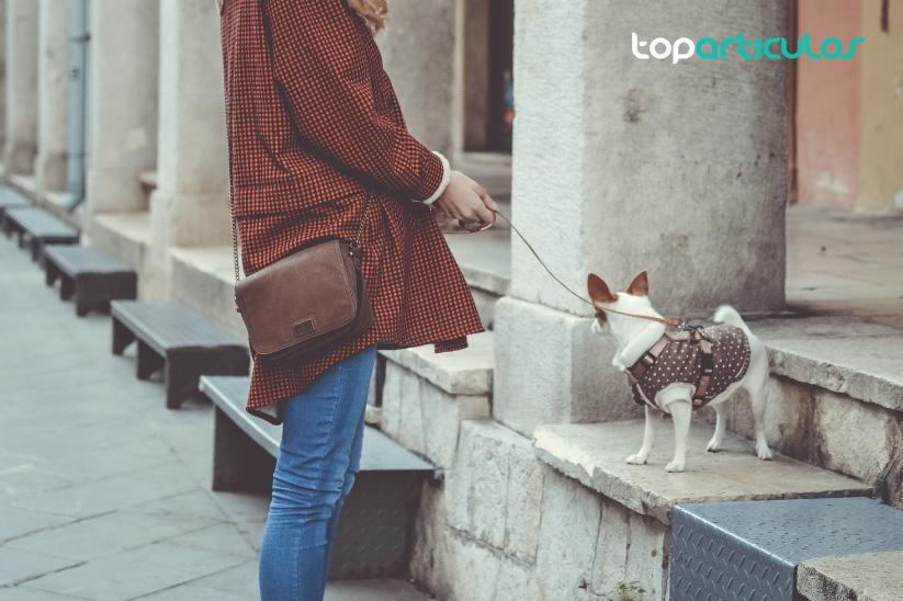 Acuérdate de llevar a tu perro siempre atado.