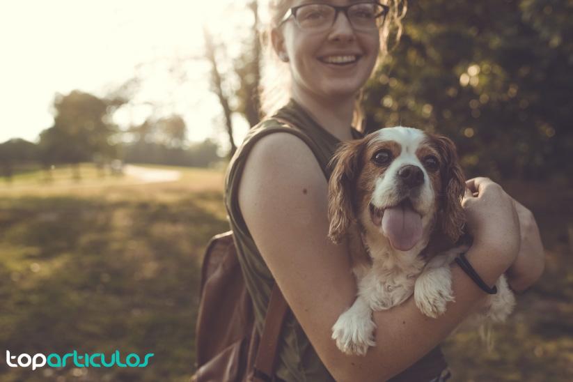 El cuidador de mascotas siempre velará por tu perro