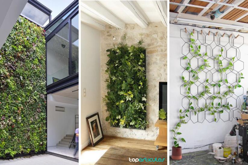 jardines verticales ideales para interior.