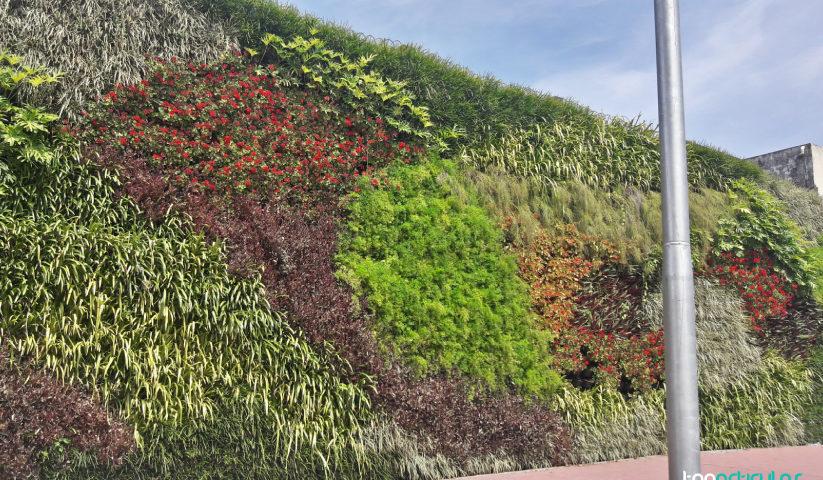 jardín vertical, una maravilla para la vista.