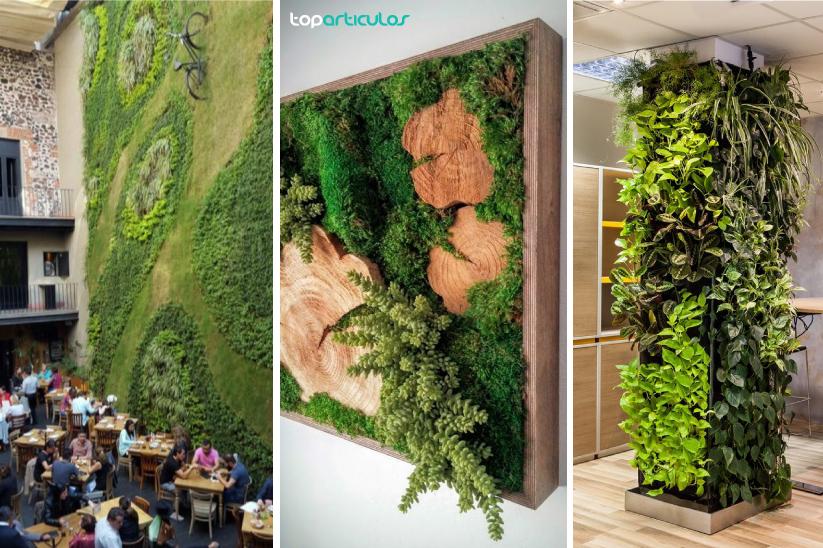 conoce las ventajas de los jardines verticales.