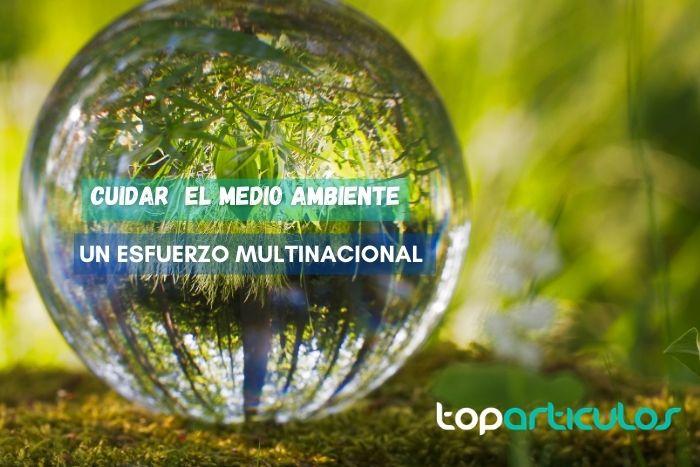 imagen de esfera simulando al planeta, cuidado del medio ambiente.
